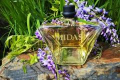 Midas By Wisteria